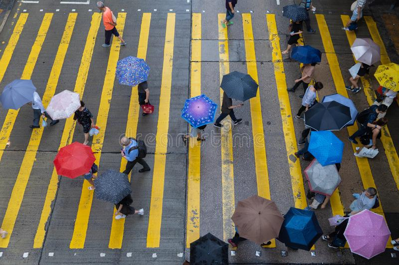 Aerial top view of crowd of people with umbrellas walking on street over zebra crossing or pedestrian crossing while raining. royalty free stock photography