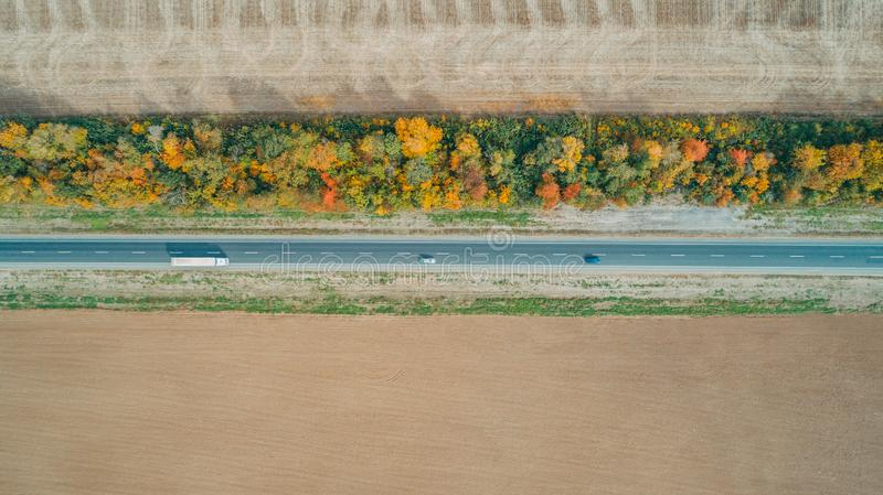 Aerial top view of the new road, beautiful autumn trees, field stock photo