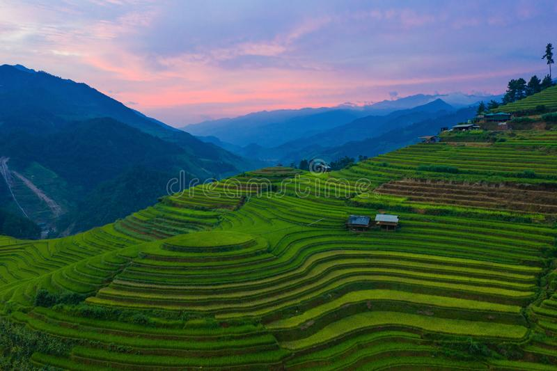 Aerial top view of paddy rice terraces, green agricultural fields in countryside or rural area of Mu Cang Chai, Yen Bai, mountain royalty free stock photos