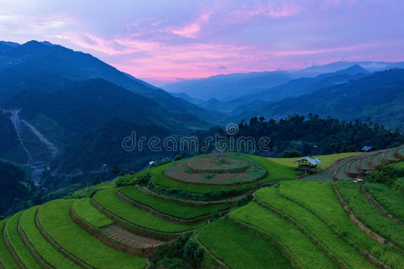 Aerial top view of paddy rice terraces, green agricultural fields in countryside or rural area of Mu Cang Chai, Yen Bai, mountain stock photo
