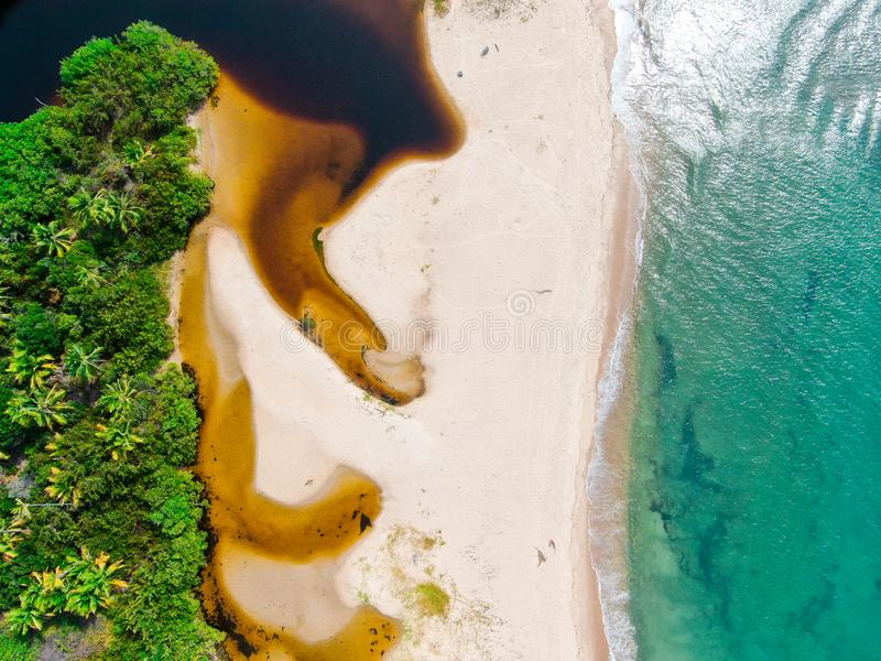 Aerial top view of river merging to tropical white sand beach and turquoise clear sea water. With small waves and palm trees background. Praia do Forte, Bahia stock photo