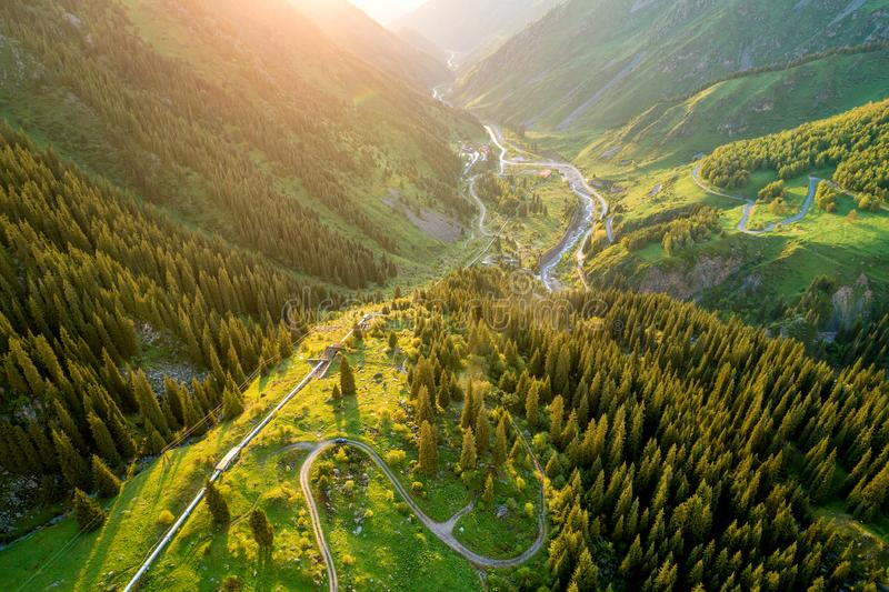Aerial top view of summer green trees in forest with a splendid mountain river in Kazakhstan stock photos