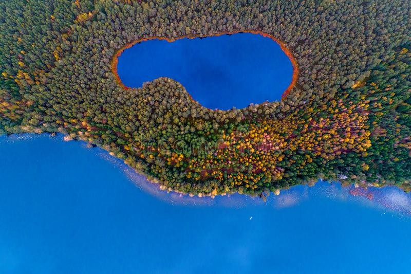 Aerial top view of two lakes in forest. Lakes in forest top view, aerial photography of beautiful Lithuanian scenic nature