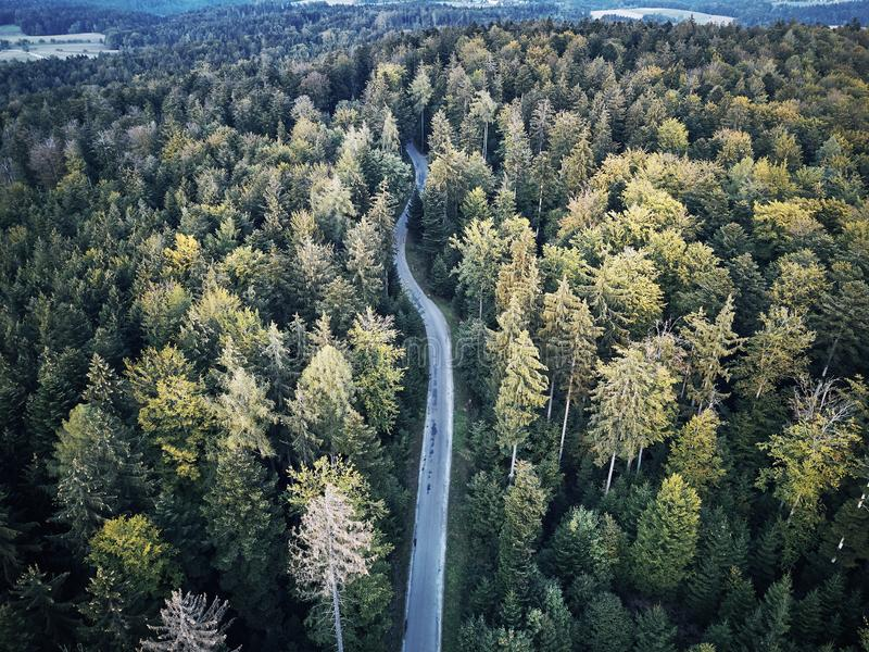 Aerial veiw of empty road in green autumn dark forest. drone shot from straight above stock image