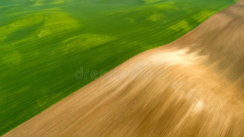 Aerial view of agricultural fields pattern in summer time. With wheat field stock photo