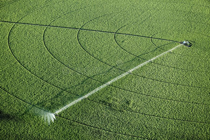 An aerial view of an agricultural sprinkler. An aerial view of an agricultural irrigating a potato field in Idaho royalty free stock photos