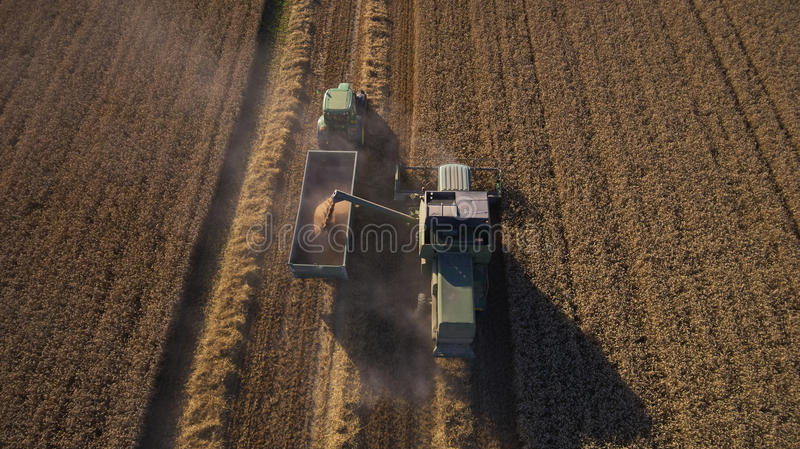 Aerial View As Tractor Collects Wheat From Combine Harvester royalty free stock photos