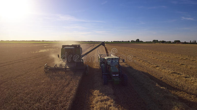Aerial View As Tractor Collects Wheat From Combine Harvester royalty free stock photography