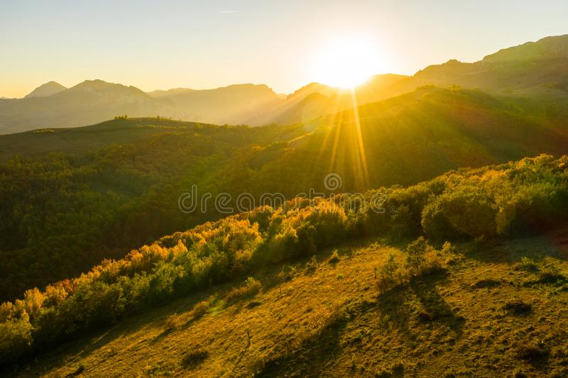 Aerial view of autumn forest in sunset lights. Aerial drone view of autumn forest in sunset lights stock photos