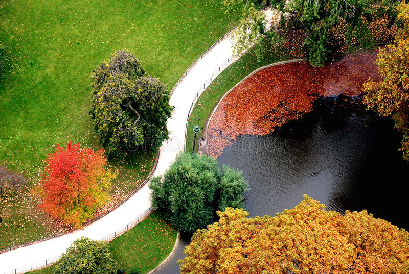 Aerial view of Autumn park royalty free stock photography