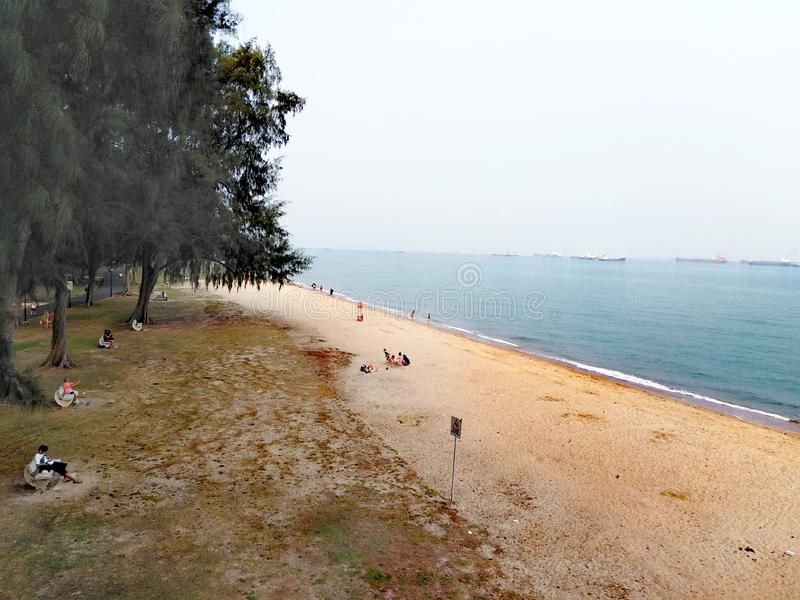 Aerial view of beach at East Coast Park. Singapore, landscape, scenery, open, water, asia, tropical, island, coastal, area, shore, reclaimed, sandy, coconut royalty free stock photos