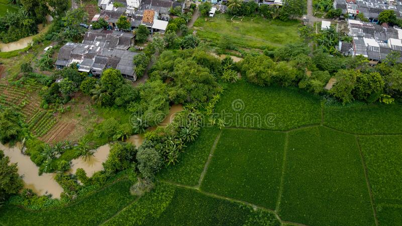 Aerial view beautiful terraced rice fields and residential, Tangerang, Indonesia stock photo