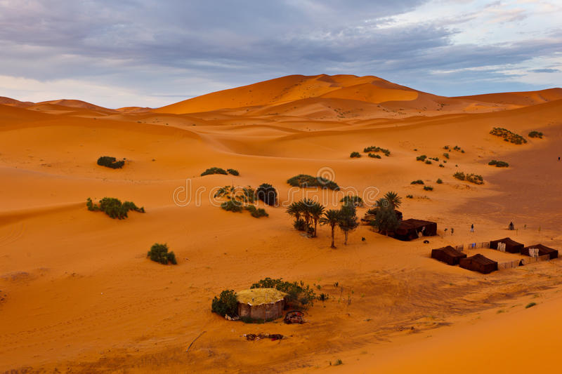 Aerial view of a Bedouin encampment in Sahara royalty free stock photo