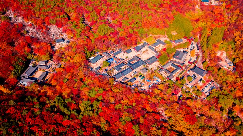 Aerial view of Beomeosa temple in Busan South korea.Image consists of temple located between the mountain covered with colorful. Trees royalty free stock images