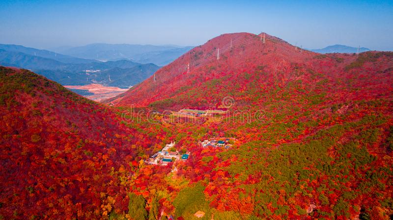 Aerial view of Beomeosa temple in Busan South korea.Image consists of temple located between the mountain covered with colorful. Trees stock photography