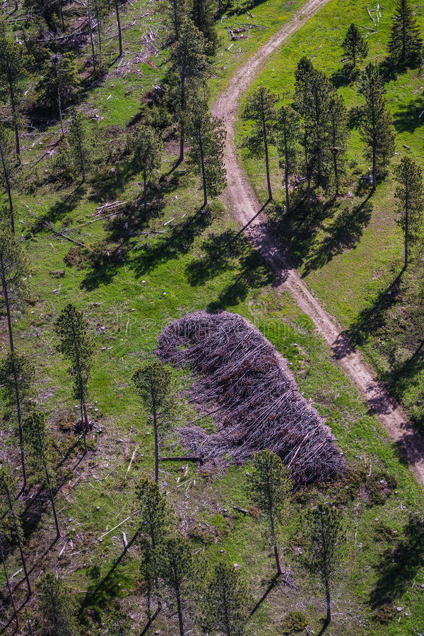 Aerial view of the black hills after the pine beetle stock photography