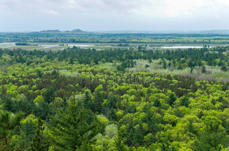 Aerial View of Black River State Forest stock image