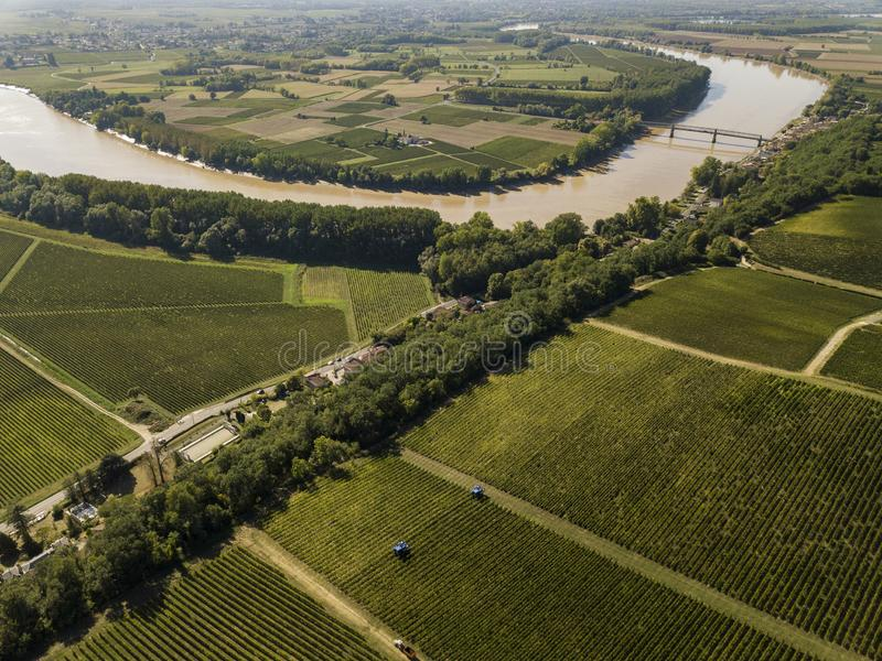 Aerial view Bordeaux Vineyard at sunrise, Entre deux mers, Langoiran, Gironde. France royalty free stock photography