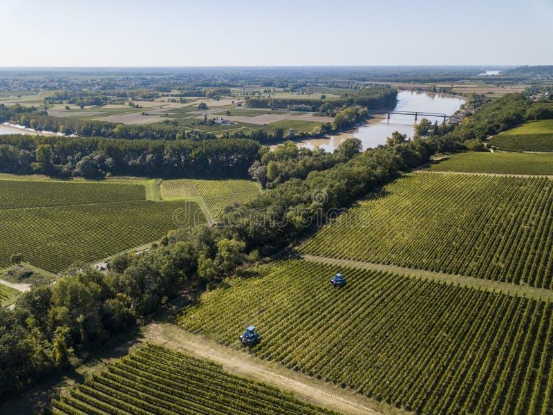 Aerial view Bordeaux Vineyard at sunrise, Entre deux mers, Langoiran, Gironde. France stock photography