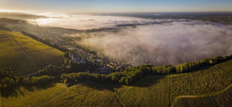 Aerial view Bordeaux Vineyard at sunrise, Entre deux mers, Langoiran, Gironde. France royalty free stock images
