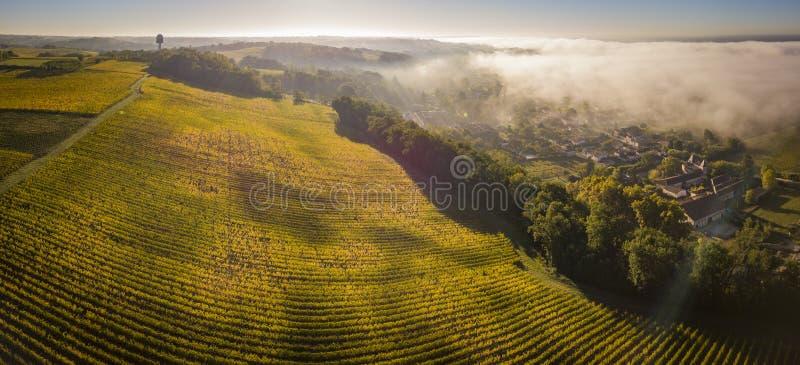 Aerial view Bordeaux Vineyard at sunrise, Entre deux mers, Langoiran, Gironde. France royalty free stock photos
