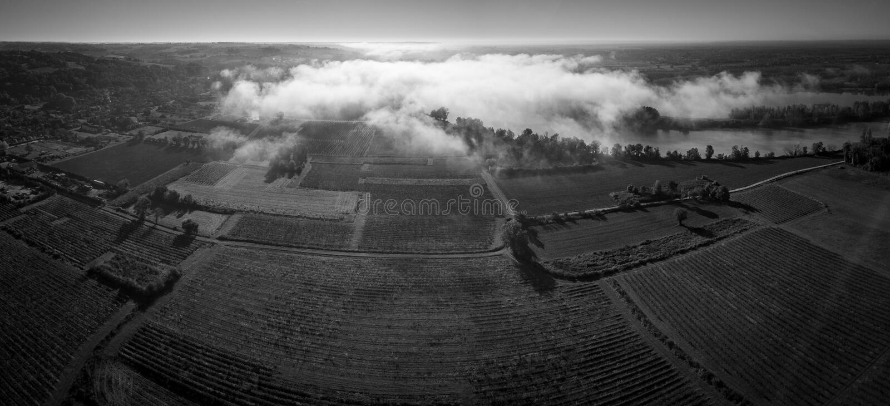 Aerial view Bordeaux Vineyard at sunrise, Entre deux mers, Langoiran, Gironde. France stock images