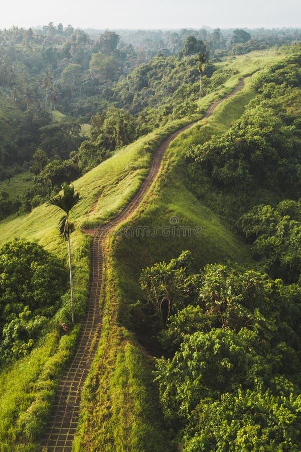 Aerial view of Campuhan Ridge Walk in Ubud Bali. Aerial view of Campuhan Ridge Walk , Scenic Green Hill in Ubud Bali stock photos