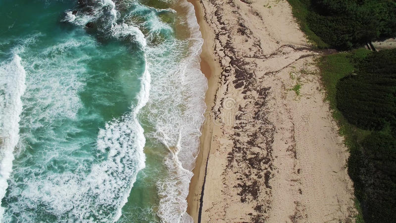Aerial View: Caribbean Beach, Barbados royalty free stock images