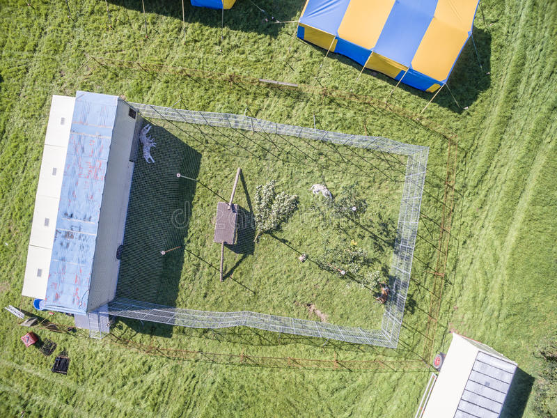 Aerial view of a circus tent and white tigers. Aerial view of a circus tent with cage of white tigers stock photography