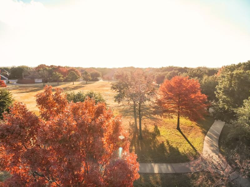 Top view close-up colorful autumn trees in the park with curved pathway near Dallas stock images