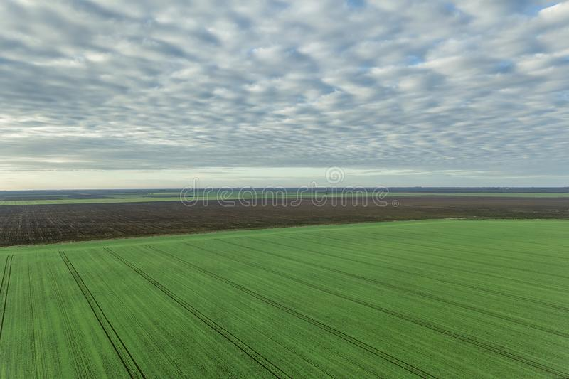 Aerial view Clouds over over green agricultural fields. stock images