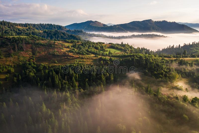 Aerial view of colorful mixed forest shrouded in morning fog on a beautiful autumn day royalty free stock images