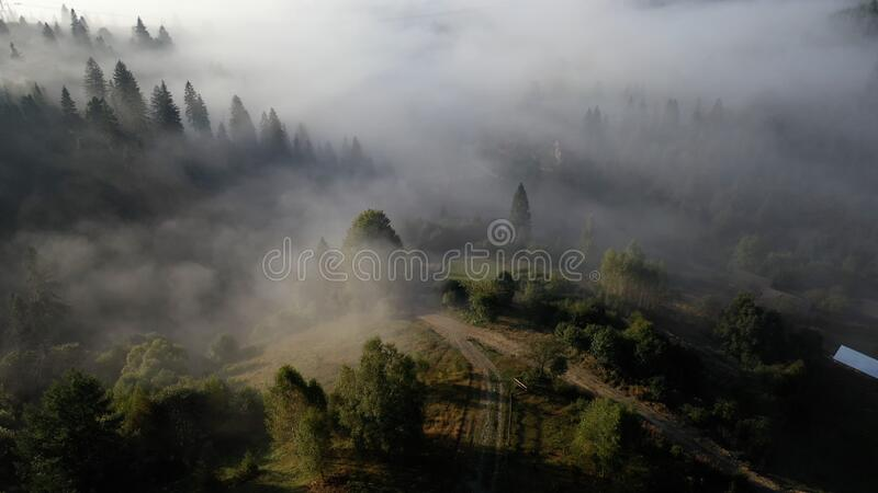 Aerial view of colorful mixed forest shrouded in morning fog on a beautiful autumn day stock image