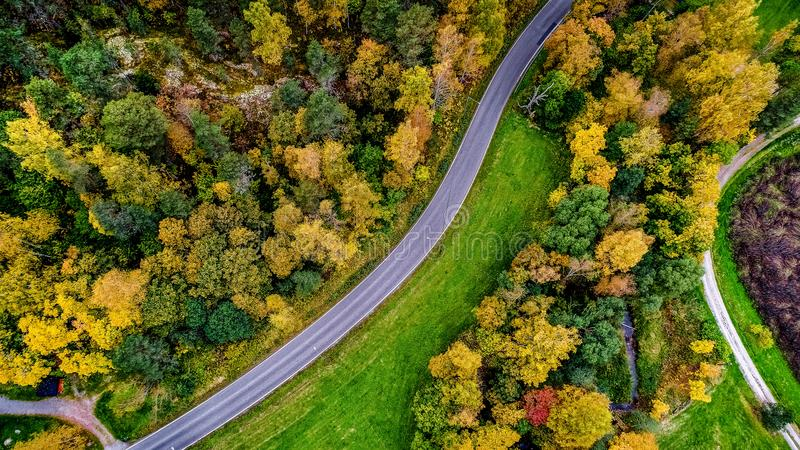 Aerial view of Colors of Autumn forests stock image