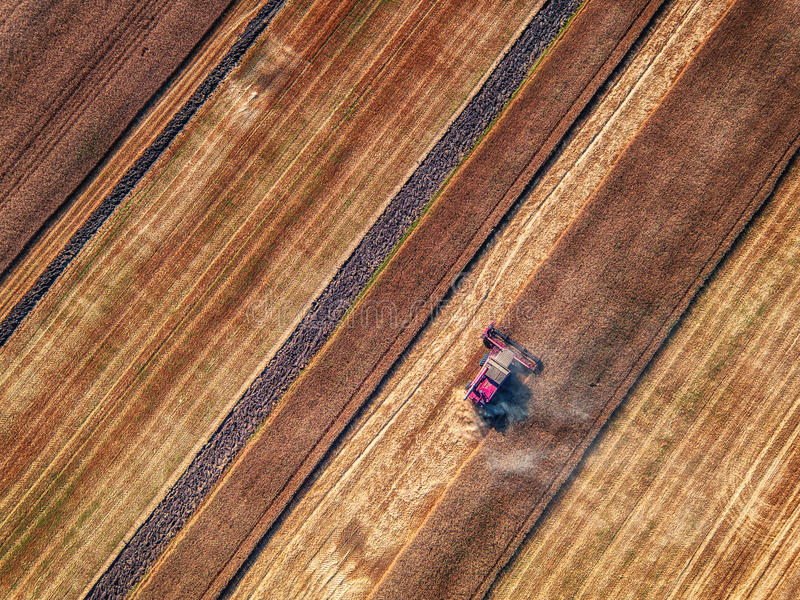 Aerial view of Combine harvester agriculture machine harvesting stock photography