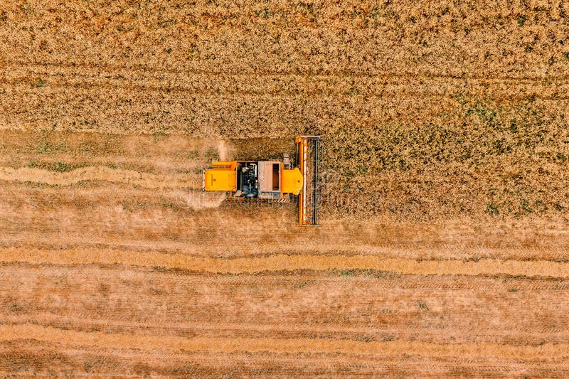 Aerial view of the combine harvester agriculture machine working on ripe wheat field royalty free stock photos