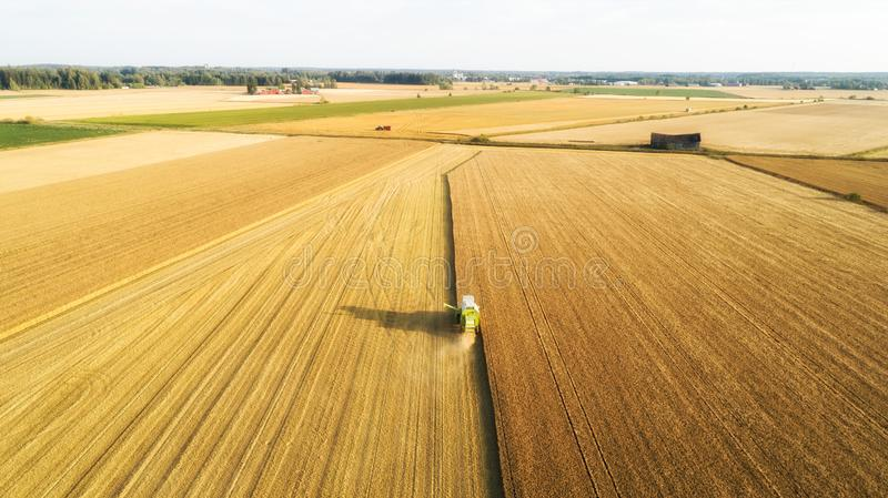 Aerial view Combine Harvester gathers the wheat at sunset. Harvesting grain field, crop season. Beautiful natural aerial landscape royalty free stock photography