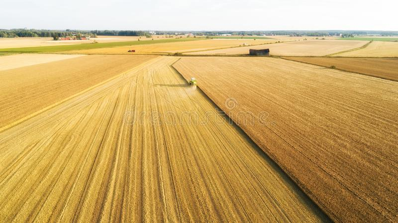 Aerial view Combine Harvester gathers the wheat at sunset. Harvesting grain field, crop season. Beautiful natural aerial landscape stock photo