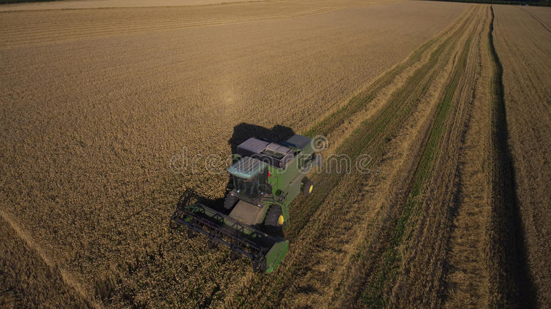 Aerial View Of Combine Harvester Working In Wheat Field royalty free stock images