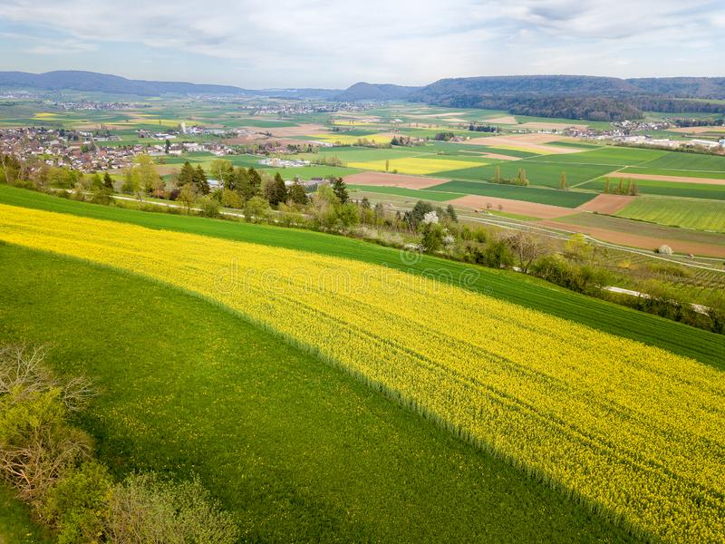 Aerial view of countryside with rape field stock photography