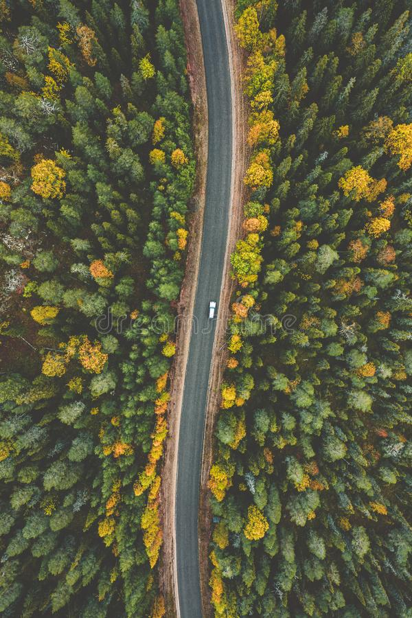Aerial view of fall landscape, road in beautiful autumn forest. In Finland royalty free stock images