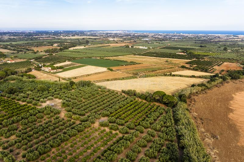 Aerial View Of A Farm And Its Plantation Stock Photo