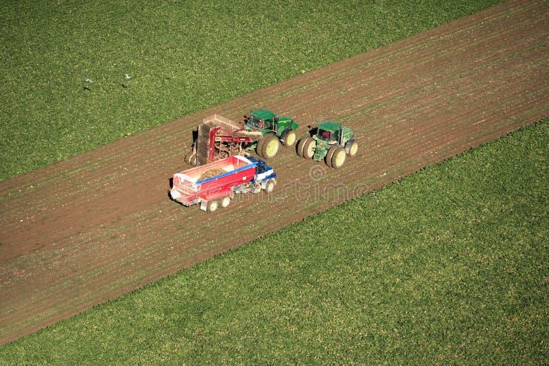Sugar Beet harvest on an Idaho farm. An aerial view of farm machinery harvesting Sugar Beets in the fertile farm fields of Idaho royalty free stock photos