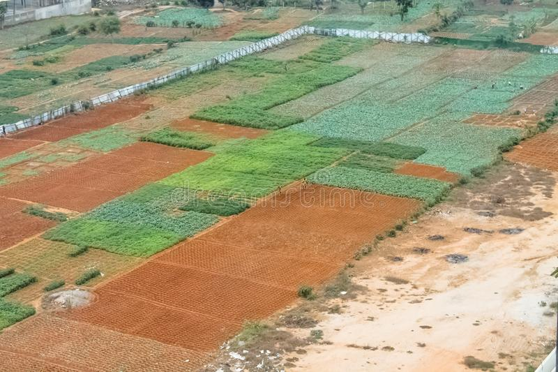 Aerial view of farmland for traditional agriculture with traditional farmers cultivating the land. With different plots in Angola, Africa, luanda, terrain stock photos
