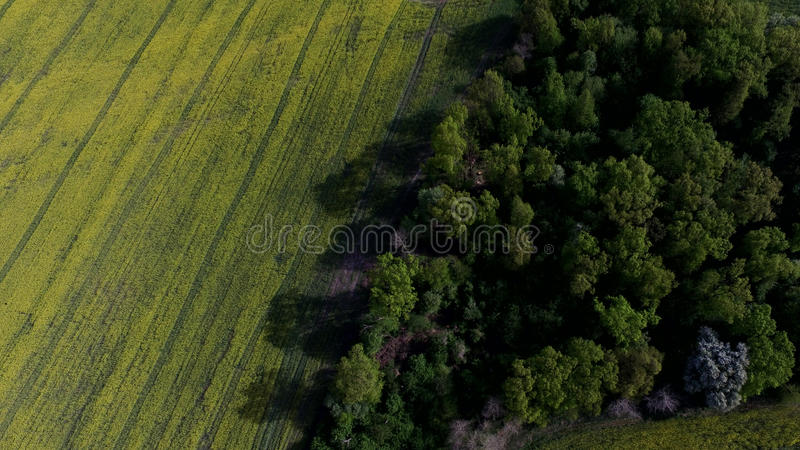Aerial view of a field from above in the spring. Beautiful aerial photography of nature in summer stock photography