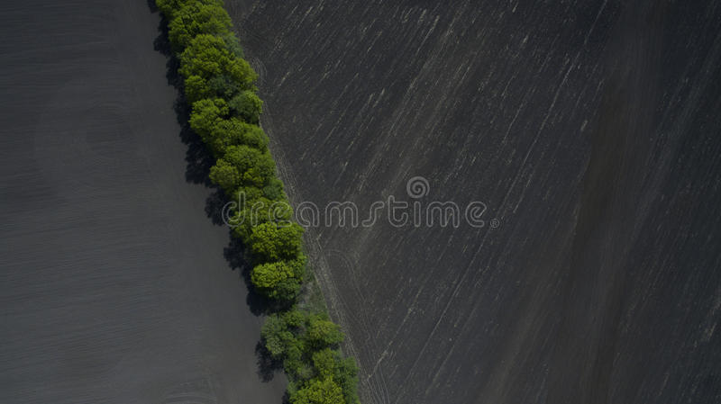 Aerial view of a field from above in the spring. Aerial view of nature from above stock image
