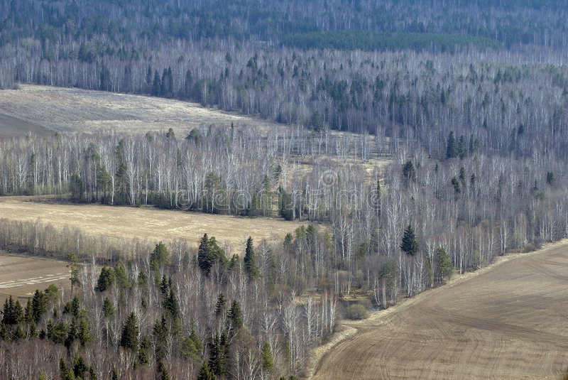 Aerial view of fields and forest. royalty free stock image