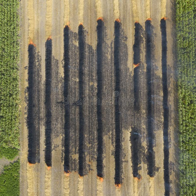 Aerial view on the fireman truck working on the field on fire stock photo