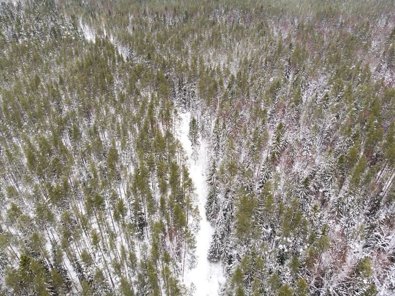 Aerial view of a road in a forest in winter. Aerial view of a road running through winter forest in estonia stock images