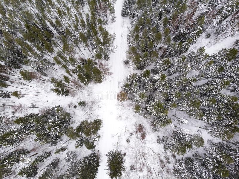 Aerial view of a road in a forest in winter. Aerial view of a road running through winter forest in estonia stock photography